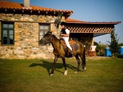 Ферма Platanorema. Верховая езда