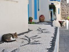 Улица в греческом городе Mandraki с традиционной вулканической мозаикой (и кот) остров Кос