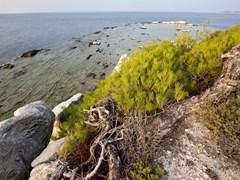 37_Blocks-of-marble-in-the-sea-on-Aliki,-Thassos-island,-Greece