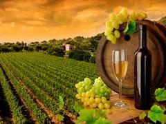 Вино Греции