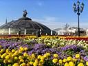 Μόσχα - Αγία Πετρούπολη (Καλοκαίρι-Φθινόπωρο 2019)