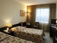 Delta Izmaylovo Hotel - photo 6