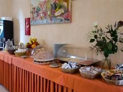 Ilisia Hotel  - photo 14