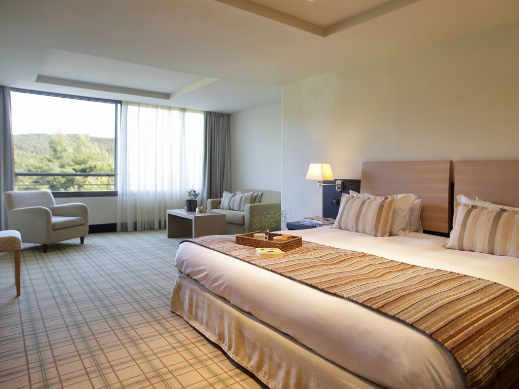 Porto Carras Sithonia Hotel - 30