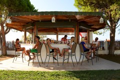 Achaia Beach Hotel  - photo 2