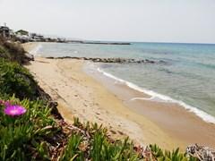 Almare Beach Hotel  - photo 6