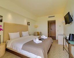Bomo Olympus Grand Resort: Double Room/Family Room