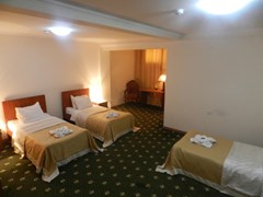Asterion Palace Hotel - photo 3