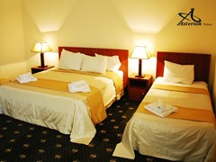Asterion Palace Hotel - photo 11