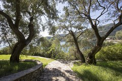 Dream Villa in Corfu - photo 15