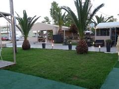 Garden Palace Hotel Laganas - photo 2