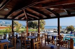Andreolas Beach Hotel - photo 12