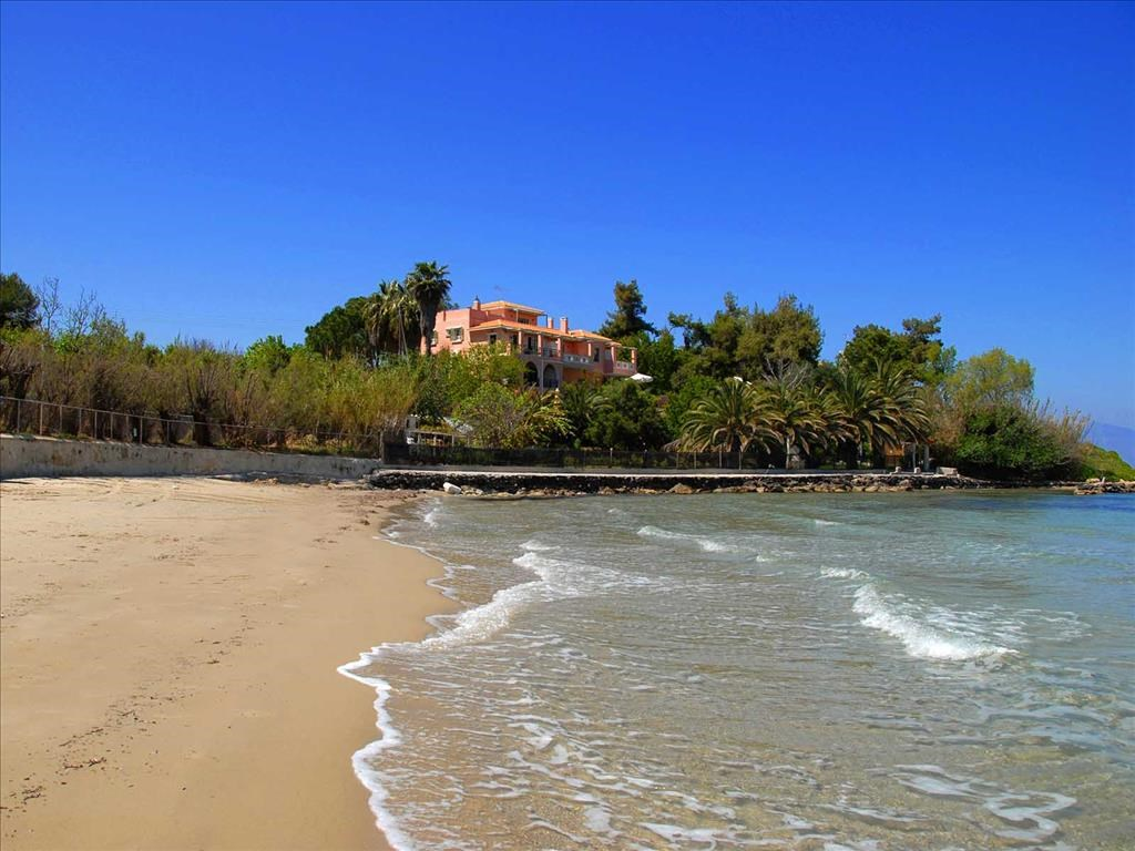 Calypso Villas Zakynthos - 6