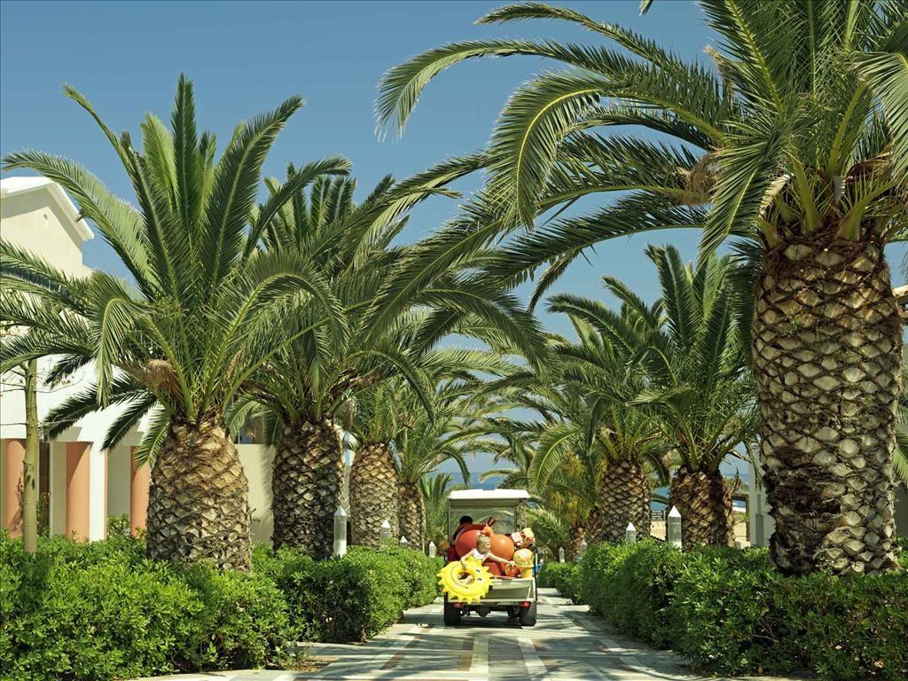 Aldemar Knossos Royal Family Resort - 12